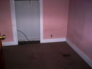 4- call gus lampo at 607-287-0069 upstate NY home