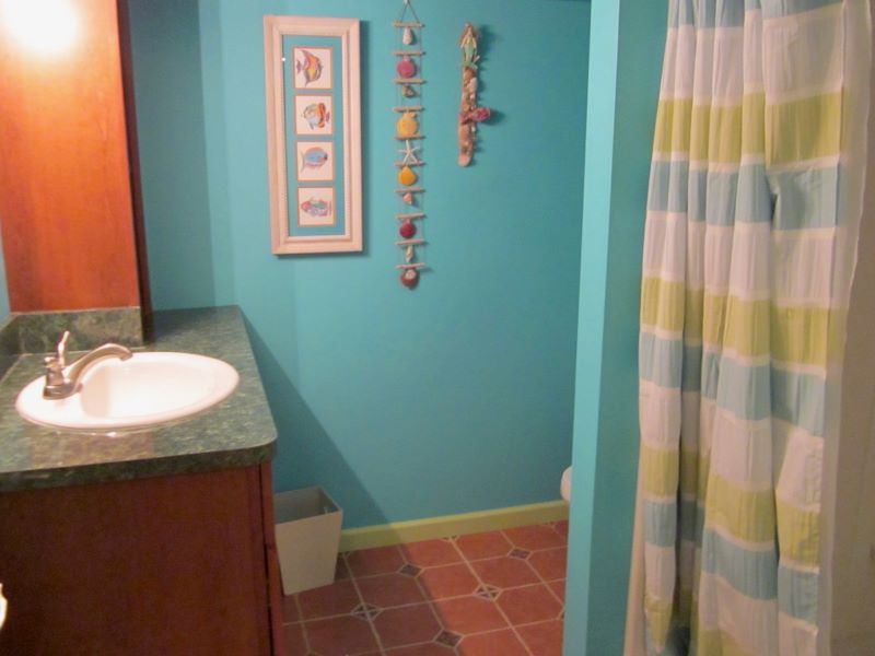 This full bathroom is in the lower level.